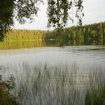 SIELSKA POLANA 070